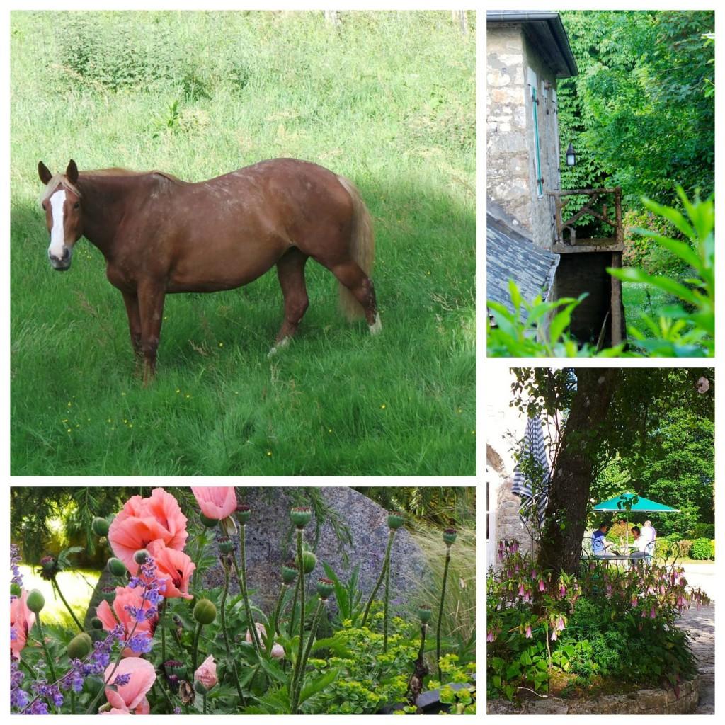 Gerla de Boer Manoir du Lys gardens
