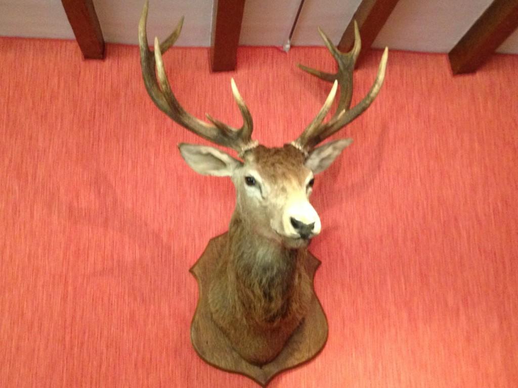 Gerla de Boer Manoir dy Lys deer