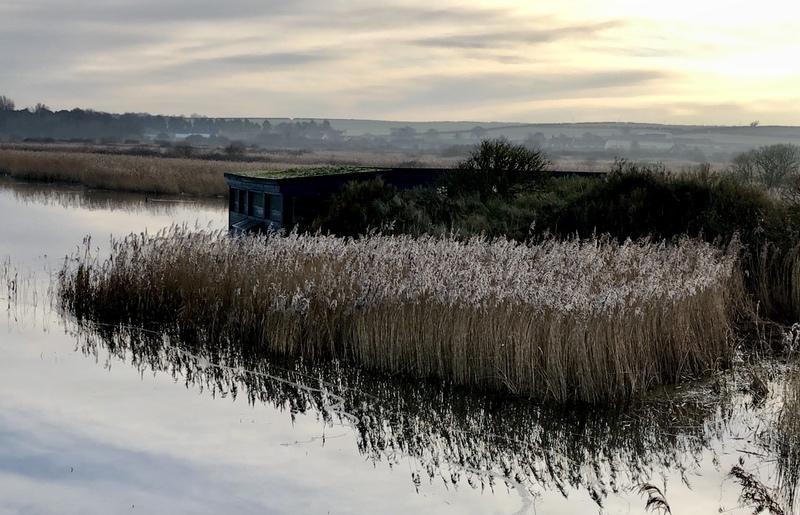 Gerla de Boer Norfolk marsh